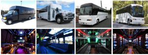 Orlando FL Coach Bus Rental